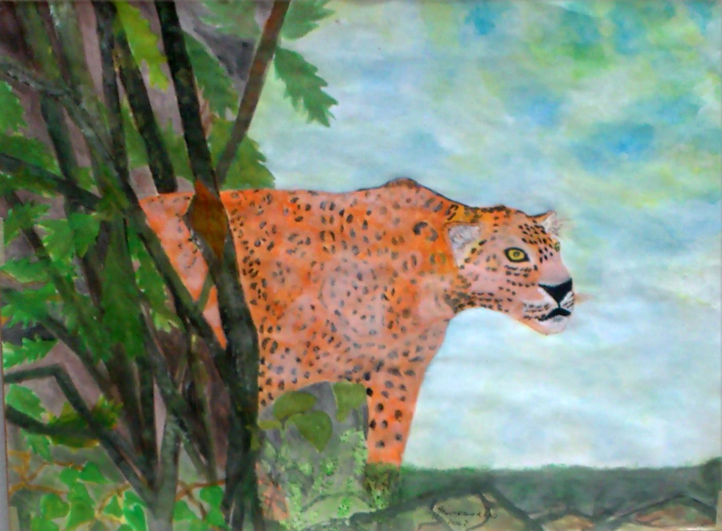 kongolesischer Leopard 41x59cm Aquarell