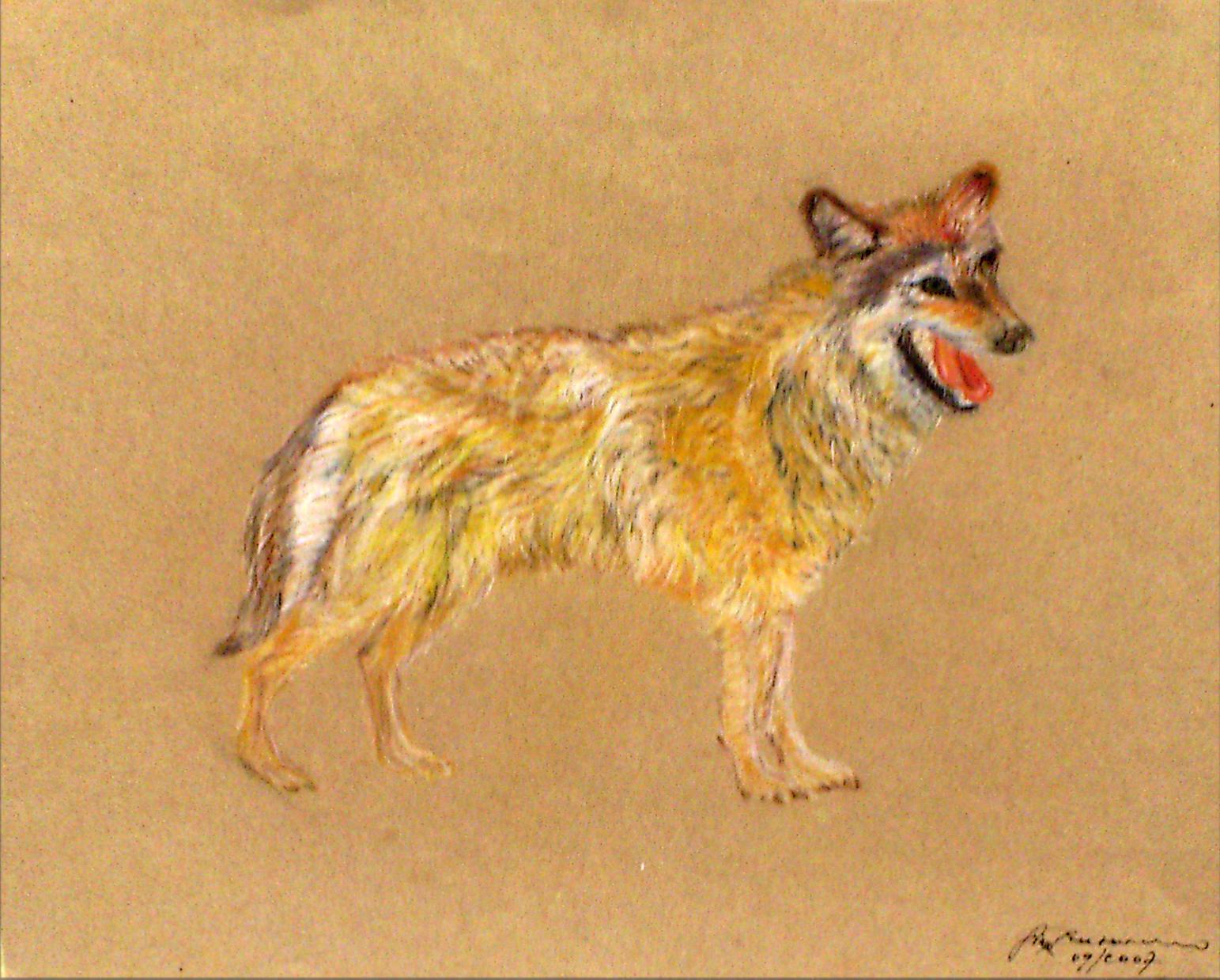 mein Freund der Wolf 36x47 cm Pastellkreide